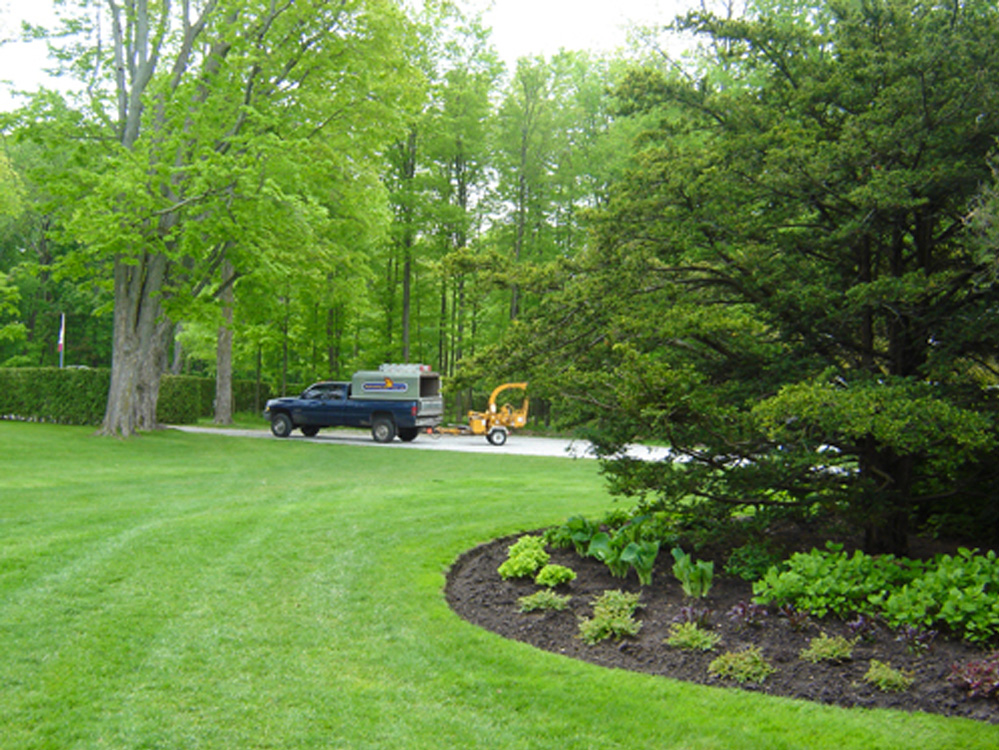 Arborists for Estate and Property Management - Property Management Services - Advanced Tree Care - ISA Certified Arborists - Toronto, York Region, Newmarket, Aurora, Lake Simcoe